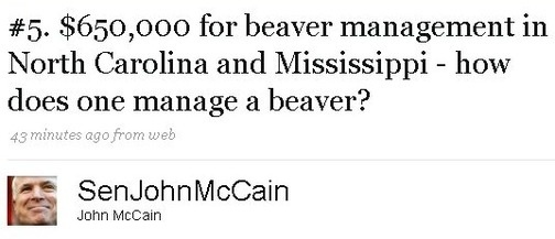 mccainbeaver