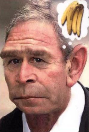 george-w-bush-ape