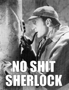 no shit sherlock 2